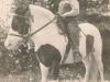 allan-herman-and-horse