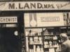 m-land-chemist