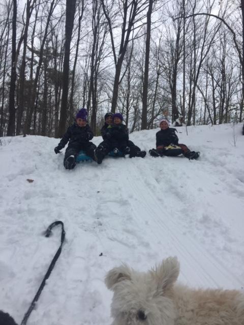 The Berkowitz boys in winter